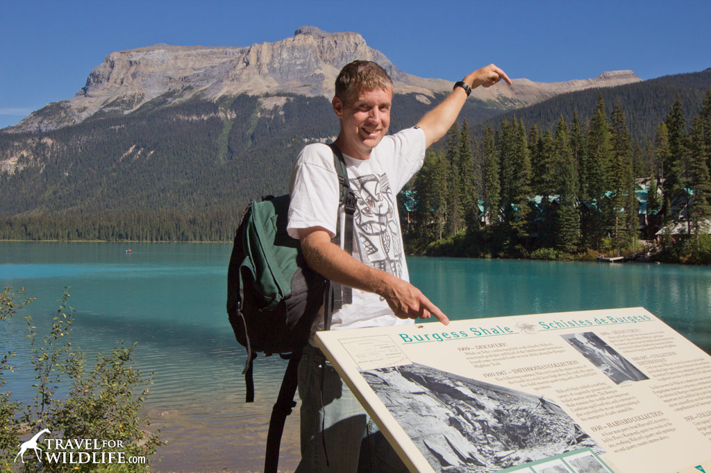 what does it cost for guided hike burgess shale
