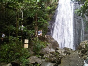 el yunque self guided tour