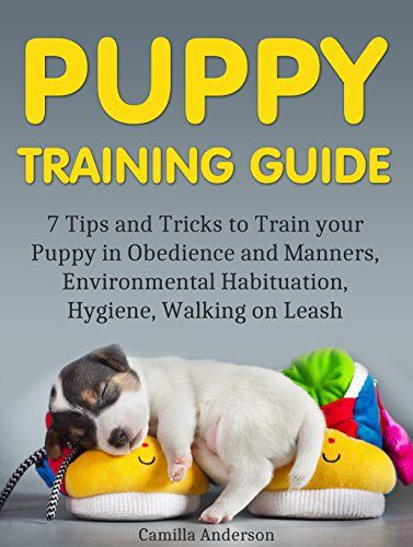 how to train your puppy like a guide dog